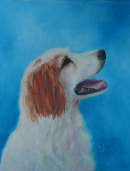 "Bailey, 11""x14"" memorial portrait. Not for sale."