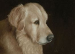 "Golden Retriever, 8""x10"" oil painting. Not for sale."