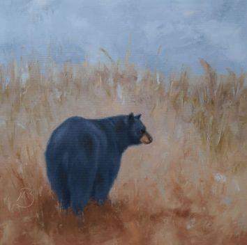 """The """"rear view"""" of a black bear walking through a summer meadow. 16""""x16"""" oil on canvas. Available. You can also buy this image printed on home décor items such as canvas prints and even pillows and coasters. See the Shop tab for more details."""