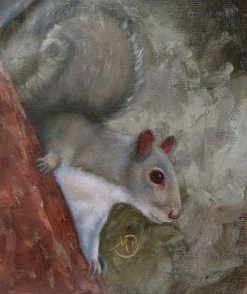 "The ubiquitous Eastern gray squirrel. No spring is complete with their chittering in the trees, driving the dogs crazy. Oil painting on canvas, 8""x10"". Available. You can also buy this image printed on home décor items such as canvas prints and even pillows and coasters. See the Shop tab for more details."