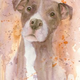 Pretty Pittie, watercolor